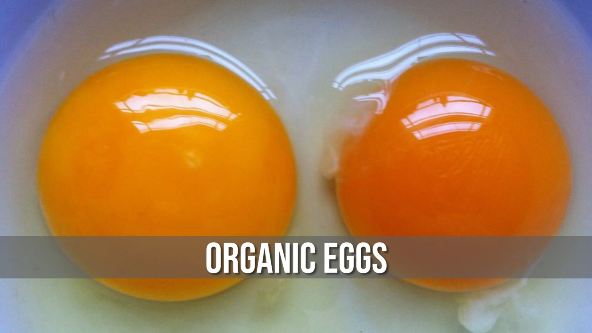 How we can identify Organic & Non-Organic Eggs from Yolk Color