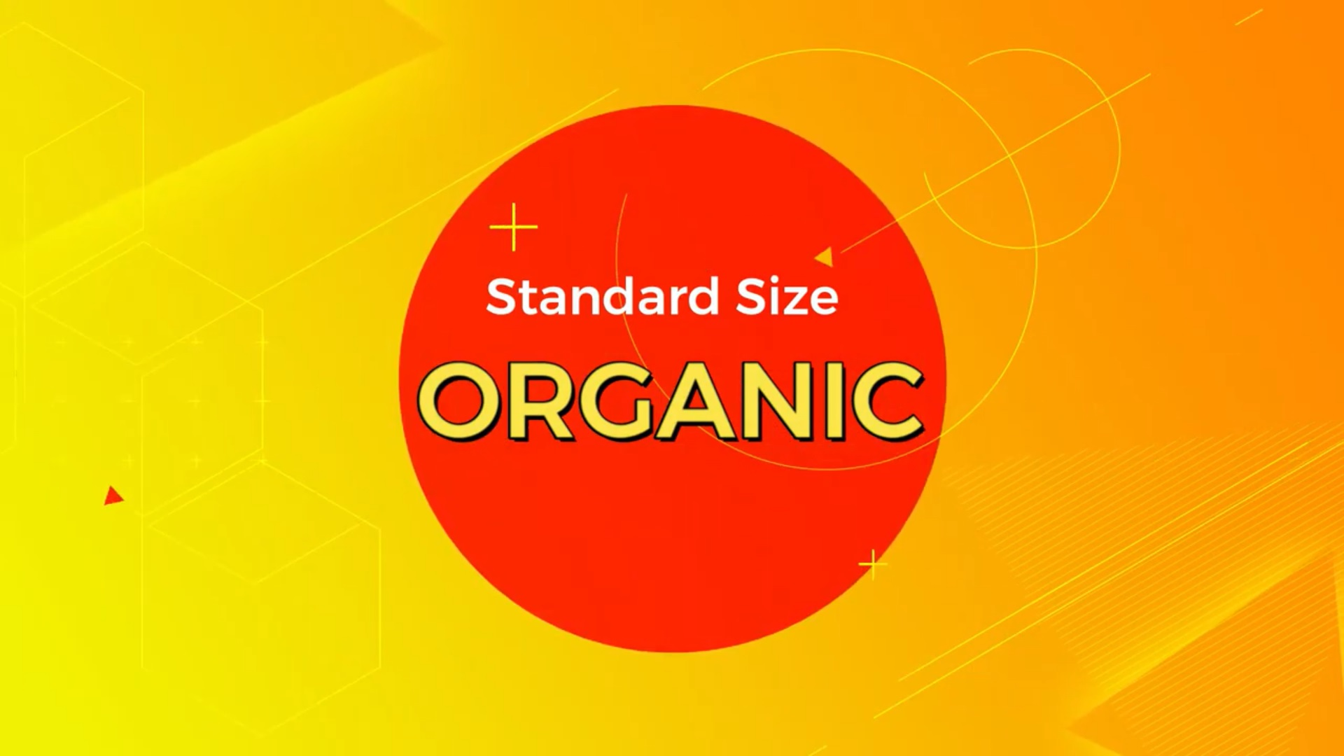What is standard Size of Organic Egg ?